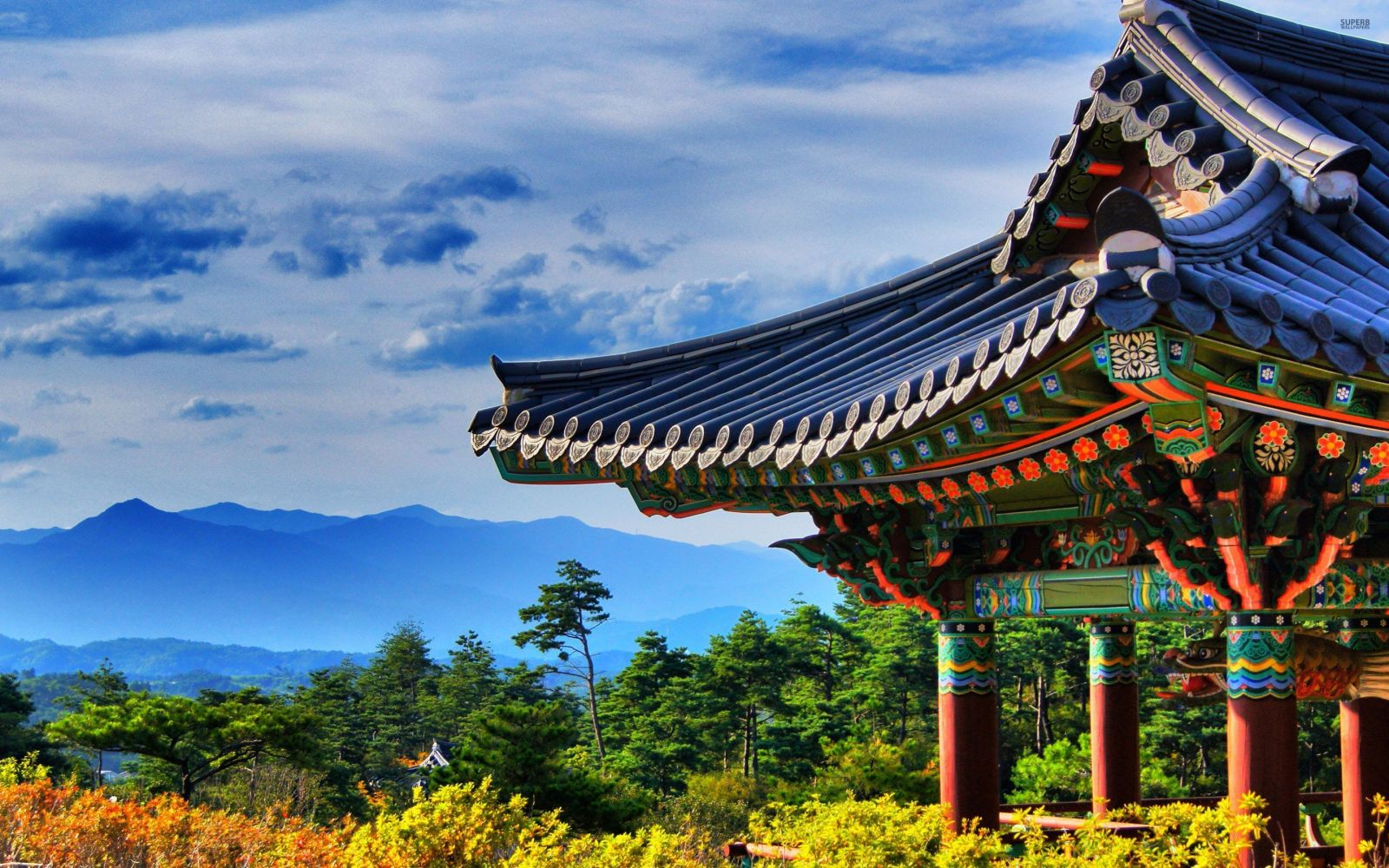 Why should you travel to Korea in the summer?